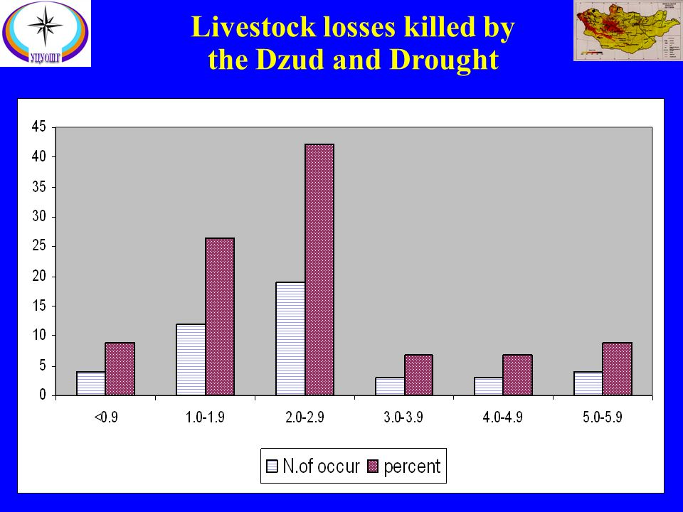 Livestock losses killed by the Dzud and Drought