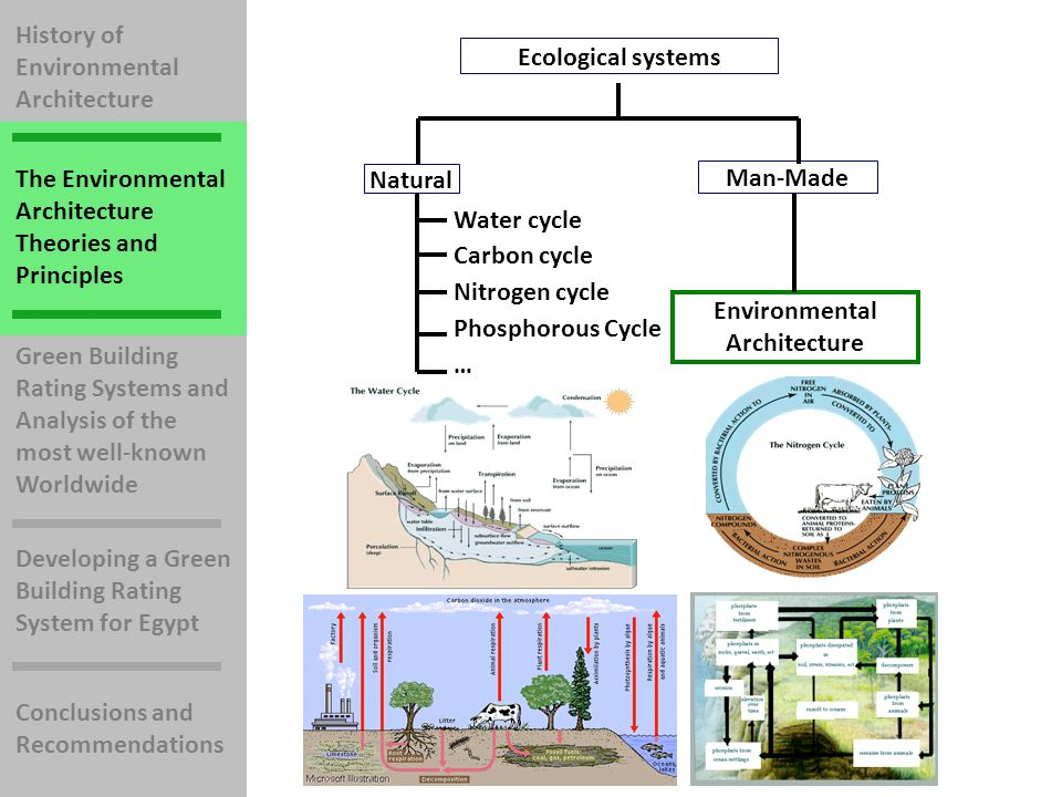 History of Environmental Architecture The Environmental Architecture Theories and Principles Green Building Rating Systems and Analysis of the most well-known Worldwide Developing a Green Building Rating System for Egypt Conclusions and Recommendations Ecological systems Natural Man-Made Water cycle Carbon cycle Nitrogen cycle Phosphorous Cycle … Environmental Architecture There are many natural systems in the environment that should be taken as a role model to define Ecological Systems.