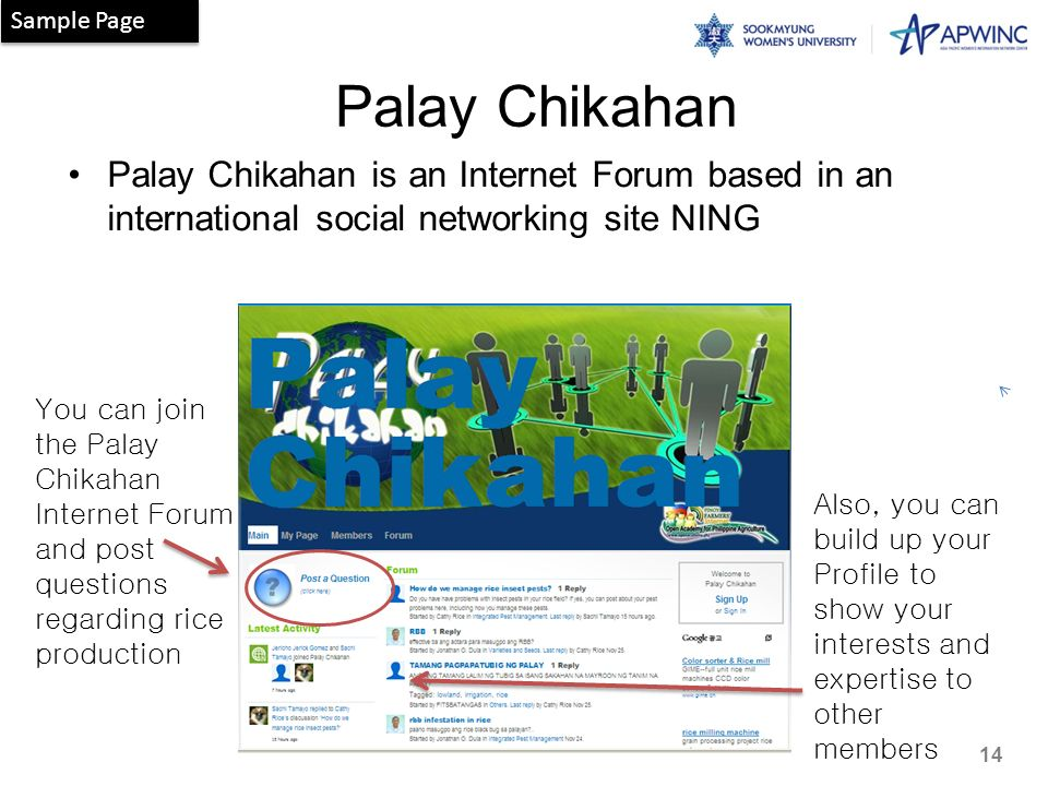 Palay Chikahan Palay Chikahan is an Internet Forum based in an international social networking site NING Also, you can build up your Profile to show your interests and expertise to other members You can join the Palay Chikahan Internet Forum and post questions regarding rice production Sample Page 14