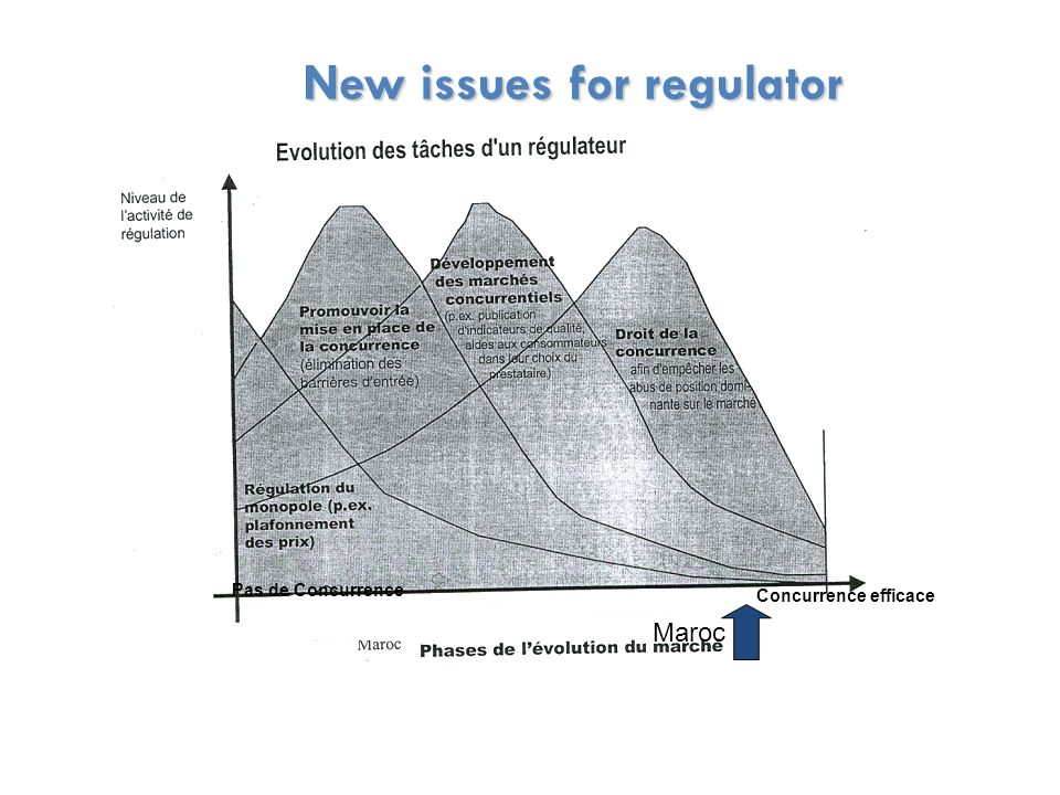 New issues for regulator New issues for regulator Maroc Concurrence efficace Pas de Concurrence