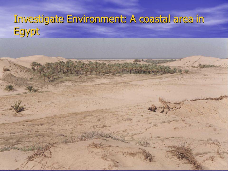 Investigate Environment: A coastal area in Egypt