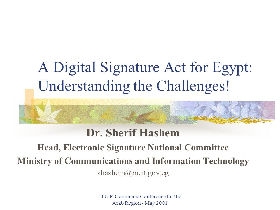 ITU E-Commerce Conference for the Arab Region - May 2001 A Digital Signature Act for Egypt: Understanding the Challenges.