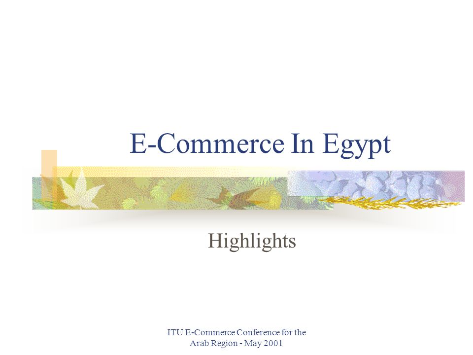 ITU E-Commerce Conference for the Arab Region - May 2001 E-Commerce In Egypt Highlights