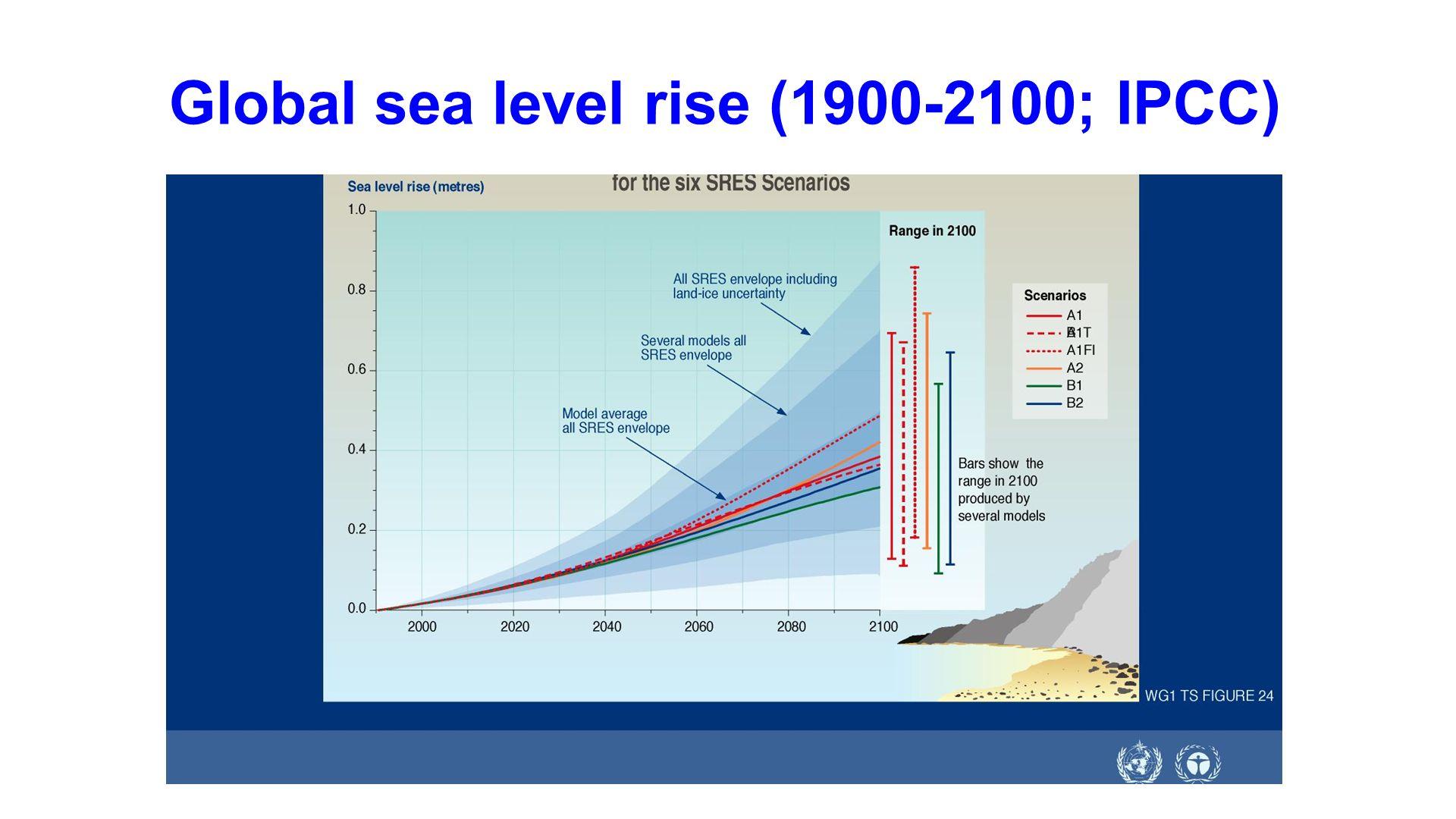 Global sea level rise (1900-2100; IPCC)