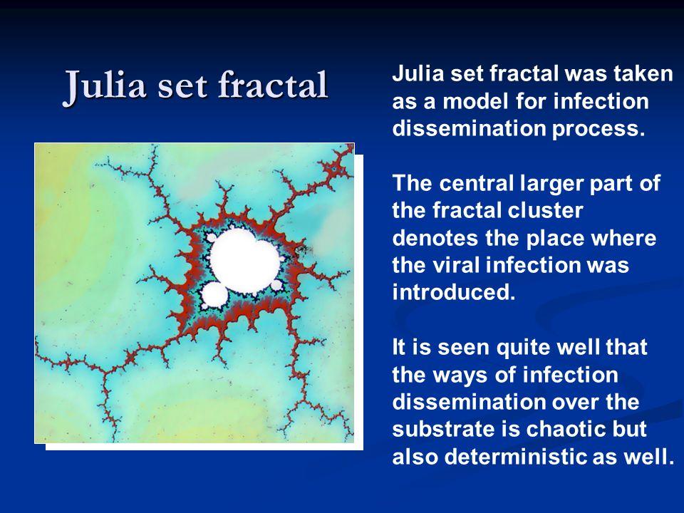 Julia set fractal Julia set fractal was taken as a model for infection dissemination process. The central larger part of the fractal cluster denotes t