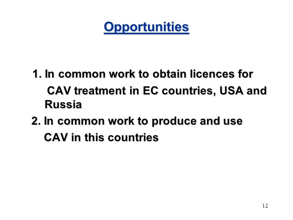 12 Opportunities 1.