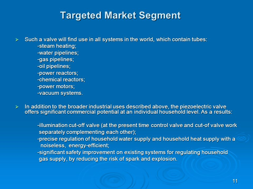 11 Targeted Market Segment Such a valve will find use in all systems in the world, which contain tubes: Such a valve will find use in all systems in the world, which contain tubes: -steam heating; -steam heating; -water pipelines; -water pipelines; -gas pipelines; -gas pipelines; -oil pipelines; -oil pipelines; -power reactors; -power reactors; -chemical reactors; -chemical reactors; -power motors; -power motors; -vacuum systems.