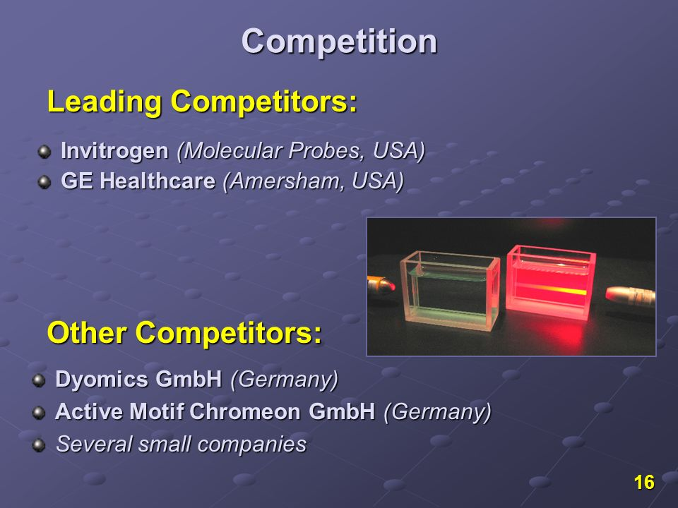 16 Competition Invitrogen (Molecular Probes, USA) GE Healthcare (Amersham, USA) Leading Competitors: Dyomics GmbH (Germany) Active Motif Chromeon GmbH (Germany) Several small companies Other Competitors: