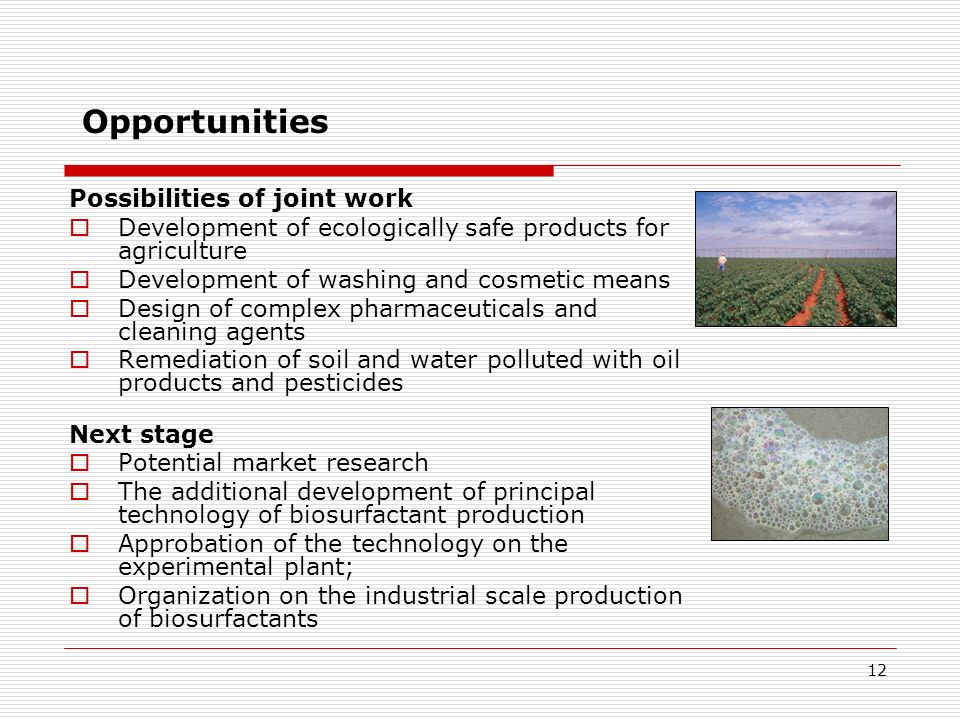 12 Opportunities Possibilities of joint work Development of ecologically safe products for agriculture Development of washing and cosmetic means Desig