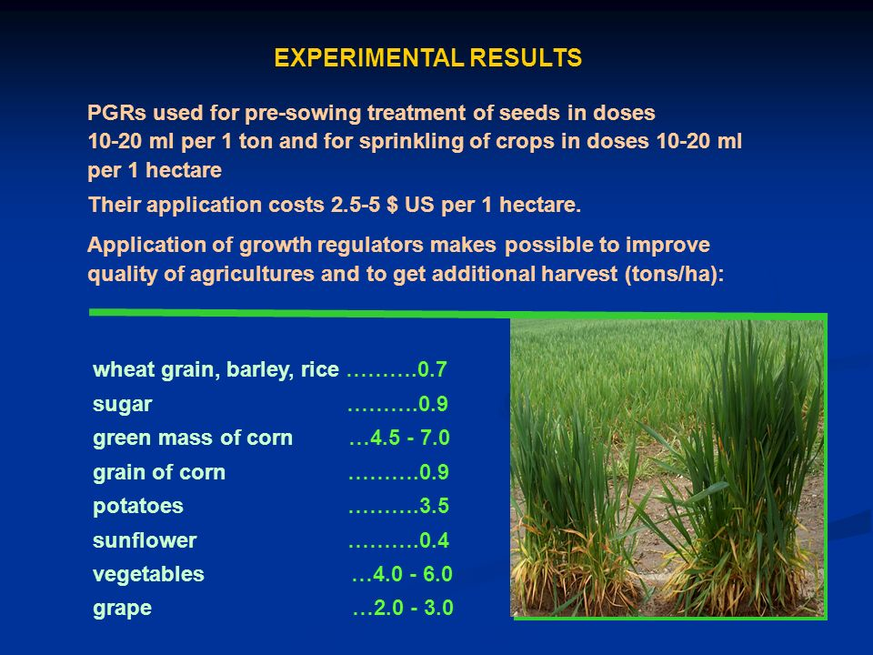 EXPERIMENTAL RESULTS PGRs used for pre-sowing treatment of seeds in doses 10-20 ml per 1 ton and for sprinkling of crops in doses 10-20 ml per 1 hectare Their application costs 2.5-5 $ US per 1 hectare.
