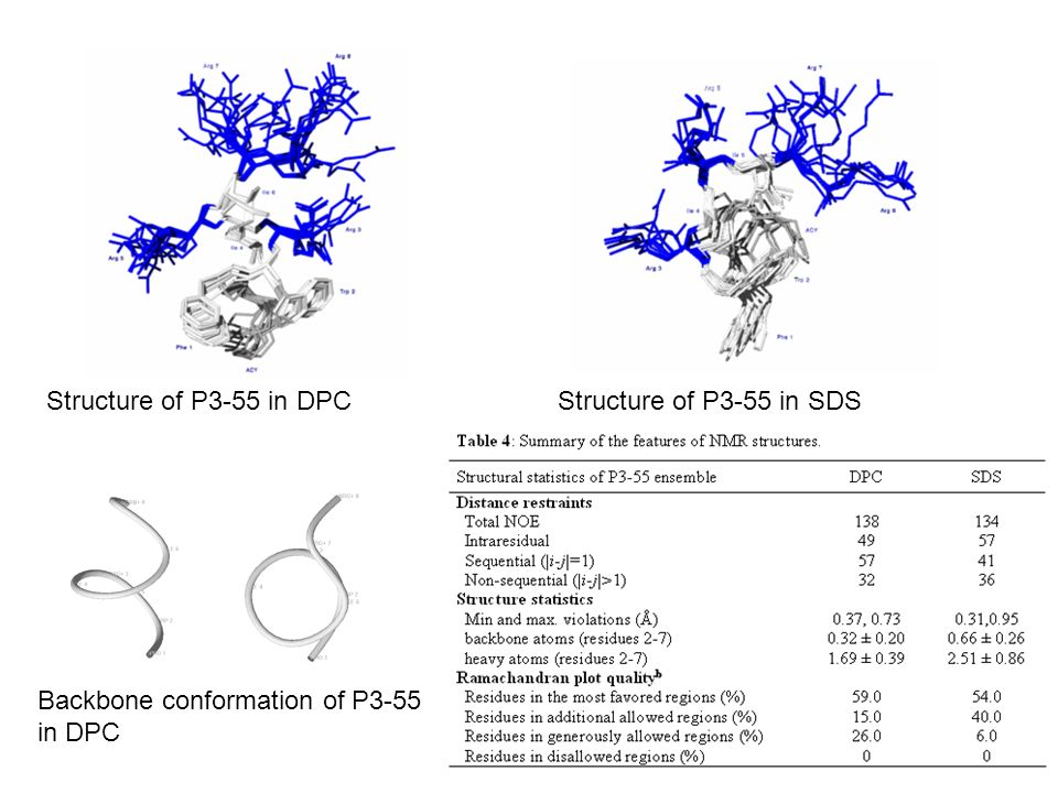 Backbone conformation of P3-55 in DPC Structure of P3-55 in DPCStructure of P3-55 in SDS