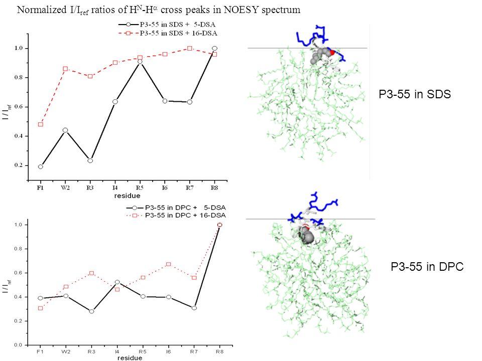 Normalized I/I ref ratios of H N -H cross peaks in NOESY spectrum P3-55 in SDS P3-55 in DPC
