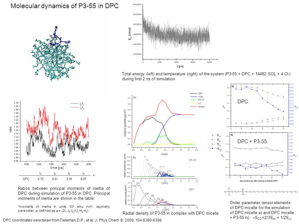 Order parameter tensor elements of DPC micelle for the simulation of DPC micelle a) and DPC micelle + P3-55 b). –S CD =2/3S xx + 1/2S yy DPC DPC + P3-