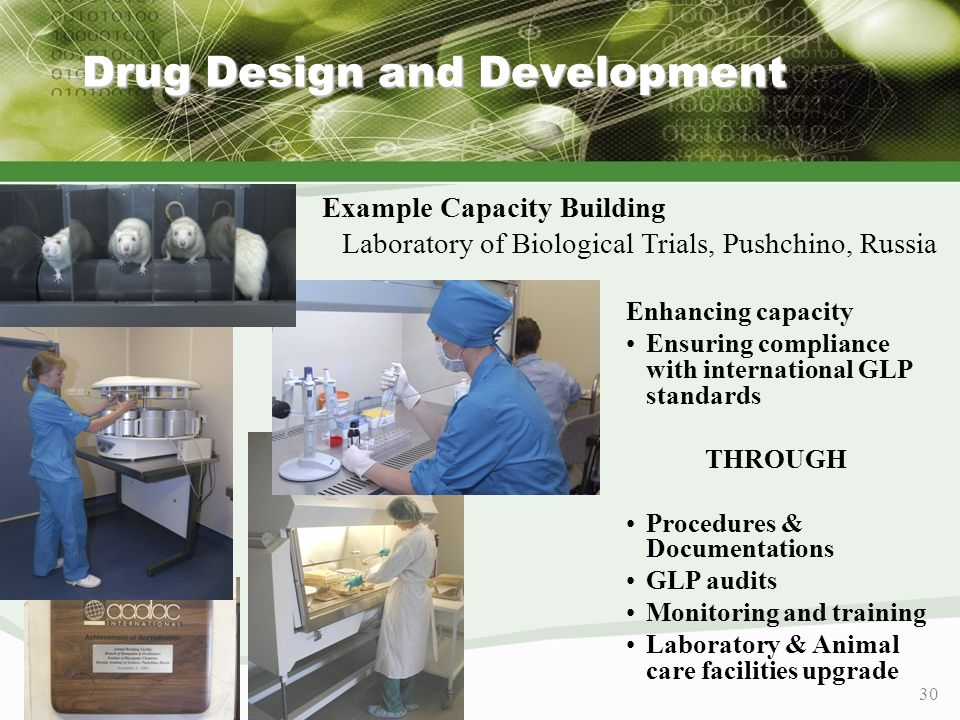 30 Example Capacity Building Laboratory of Biological Trials, Pushchino, Russia Enhancing capacity Ensuring compliance with international GLP standard