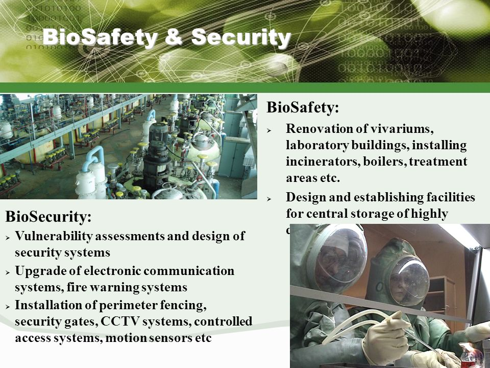 31 BioSafety & Security BioSafety: Renovation of vivariums, laboratory buildings, installing incinerators, boilers, treatment areas etc. Design and es