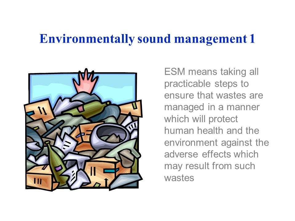 Environmentally sound management 1 ESM means taking all practicable steps to ensure that wastes are managed in a manner which will protect human health and the environment against the adverse effects which may result from such wastes