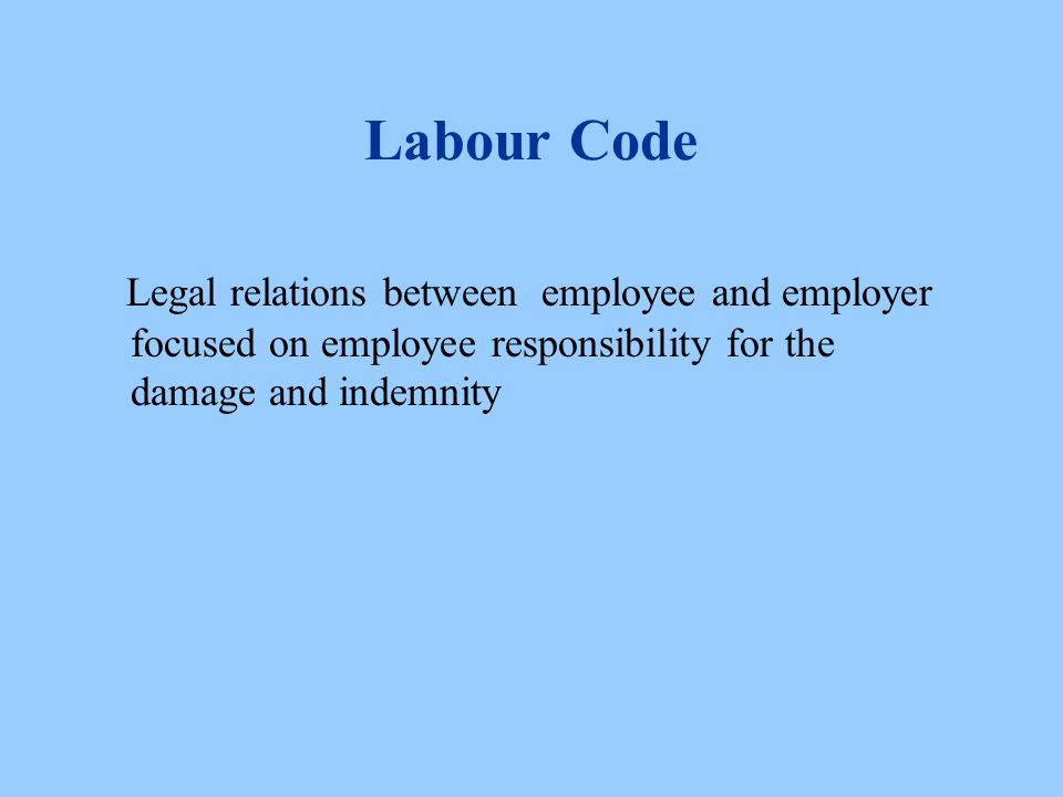 Labour Code Legal relations between employee and employer focused on employee responsibility for the damage and indemnity
