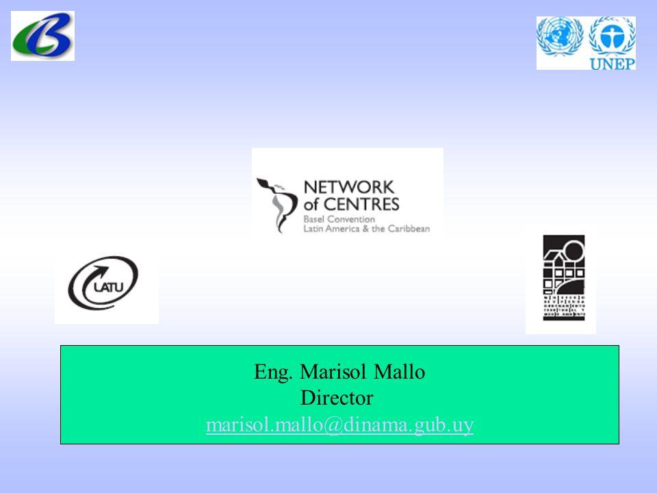 Eng. Marisol Mallo Director marisol.mallo@dinama.gub.uy marisol.mallo@dinama.gub.uy