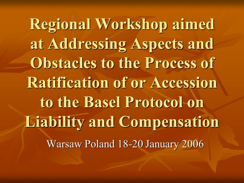 Regional Workshop aimed at Addressing Aspects and Obstacles to the Process of Ratification of or Accession to the Basel Protocol on Liability and Compensation Warsaw Poland 18-20 January 2006