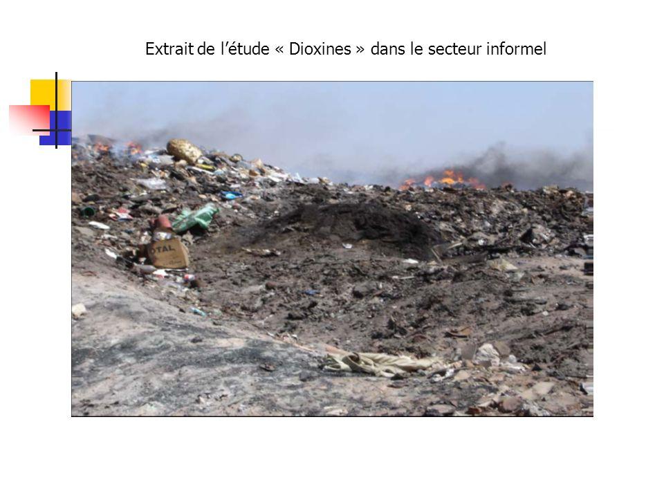 Extrait de létude « Dioxines » dans le secteur informel