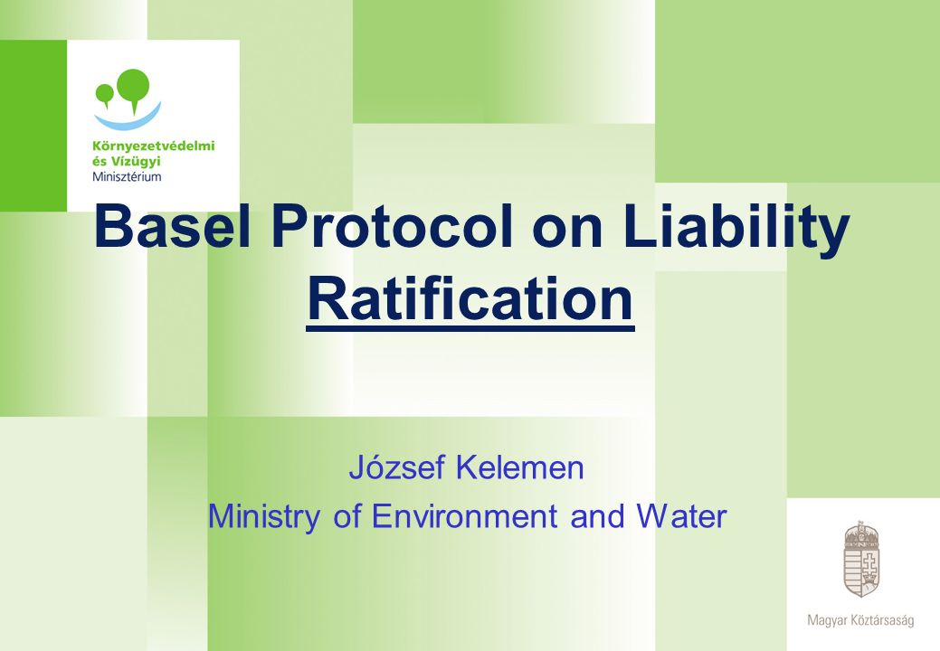 Basel Protocol on Liability Ratification József Kelemen Ministry of Environment and Water