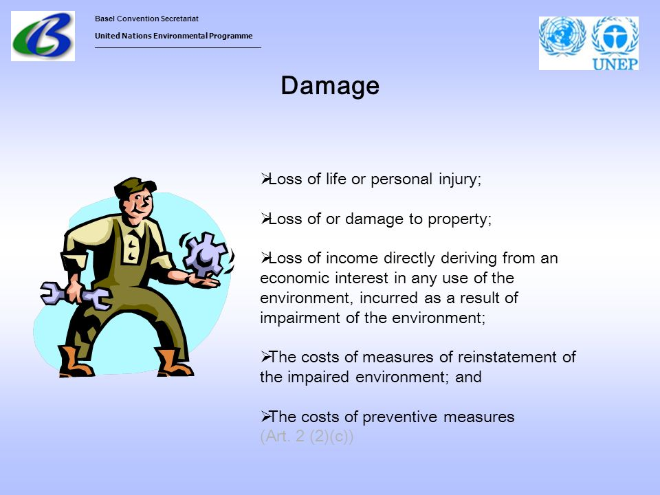 Basel Convention Secretariat United Nations Environmental Programme ___________________________________ Damage Loss of life or personal injury; Loss o