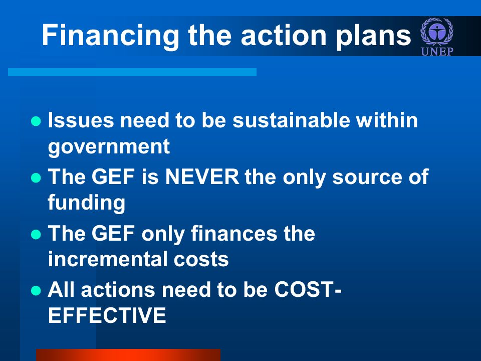 Financing the action plans Issues need to be sustainable within government The GEF is NEVER the only source of funding The GEF only finances the incremental costs All actions need to be COST- EFFECTIVE