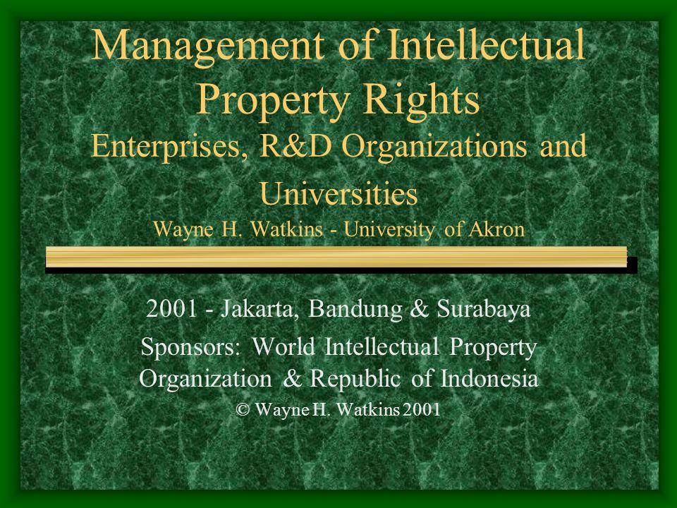 2001 - Jakarta, Bandung & Surabaya Sponsors: World Intellectual Property Organization & Republic of Indonesia © Wayne H.