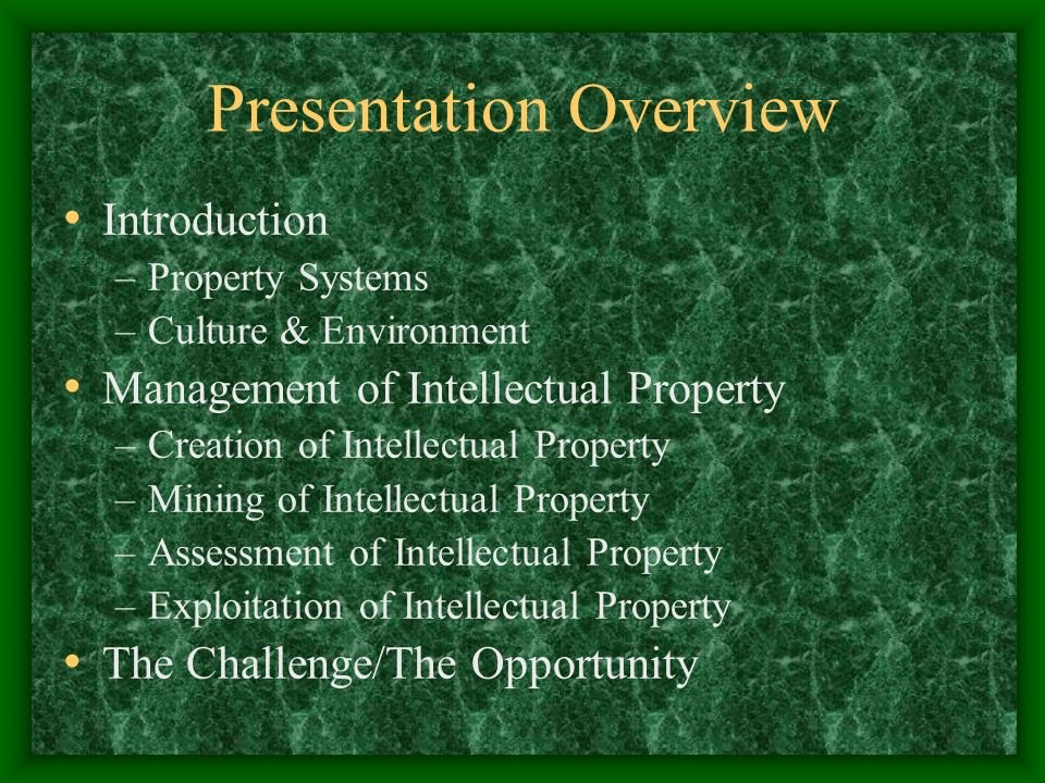 Presentation Overview Introduction –Property Systems –Culture & Environment Management of Intellectual Property –Creation of Intellectual Property –Mining of Intellectual Property –Assessment of Intellectual Property –Exploitation of Intellectual Property The Challenge/The Opportunity