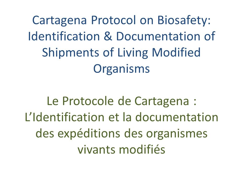 Cartagena Protocol on Biosafety: Identification & Documentation of Shipments of Living Modified Organisms Le Protocole de Cartagena : LIdentification et la documentation des expéditions des organismes vivants modifiés