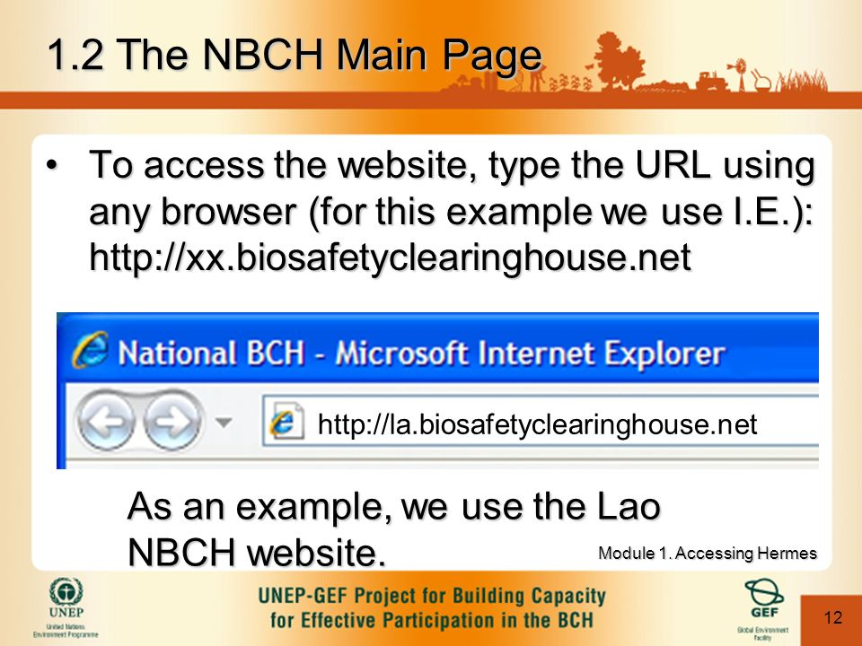12 To access the website, type the URL using any browser (for this example we use I.E.): http://xx.biosafetyclearinghouse.netTo access the website, type the URL using any browser (for this example we use I.E.): http://xx.biosafetyclearinghouse.net http://la.biosafetyclearinghouse.net As an example, we use the Lao NBCH website.