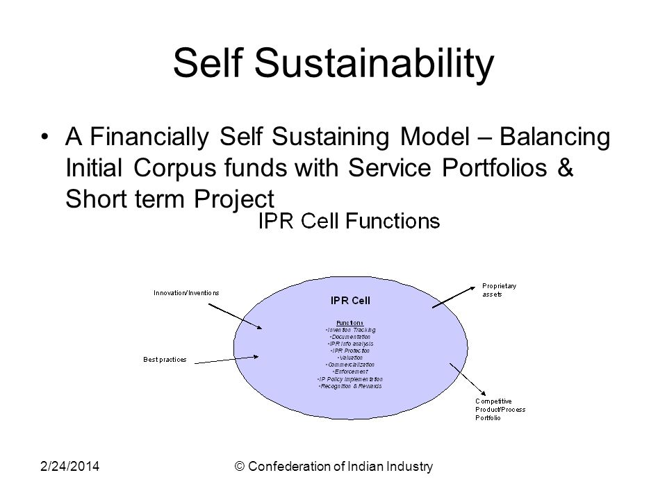 2/24/2014© Confederation of Indian Industry Self Sustainability A Financially Self Sustaining Model – Balancing Initial Corpus funds with Service Portfolios & Short term Project