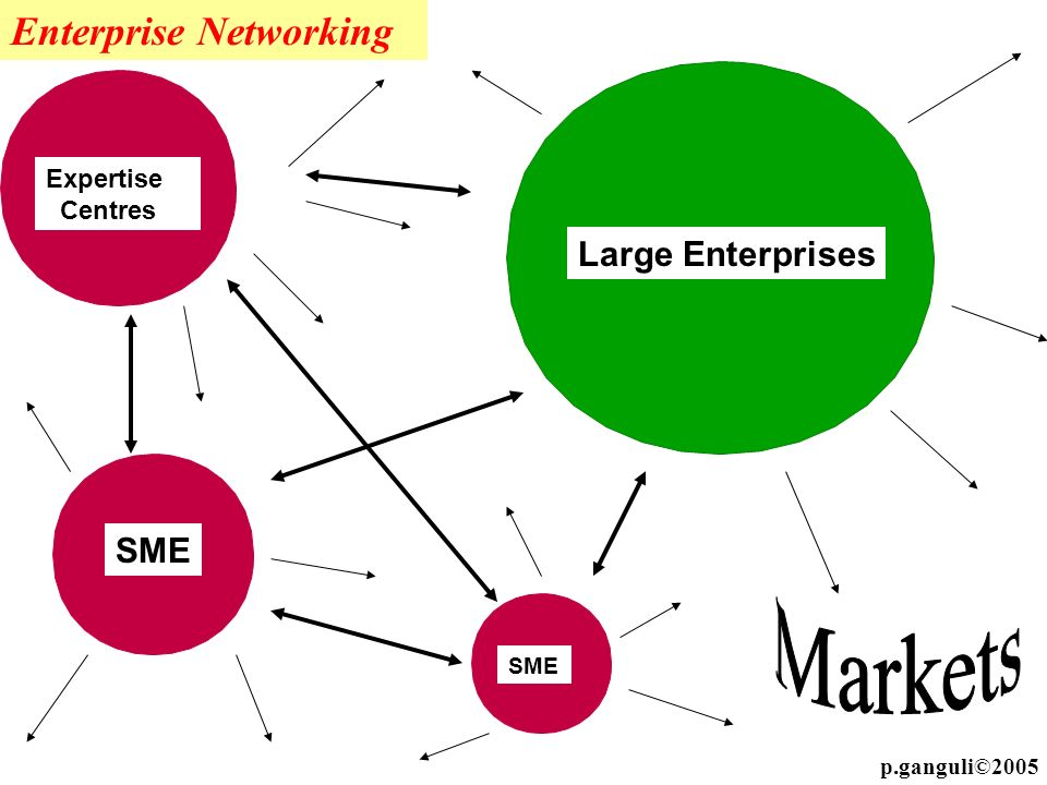 Expertise Centres SME Large Enterprises Enterprise Networking p.ganguli©2005