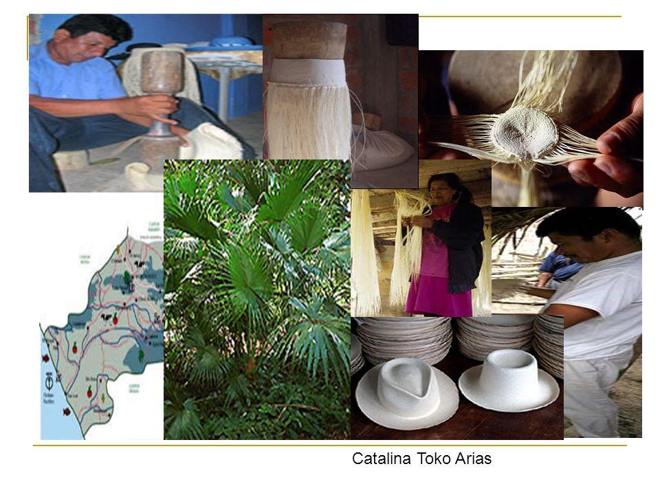 Catalina Toko Arias