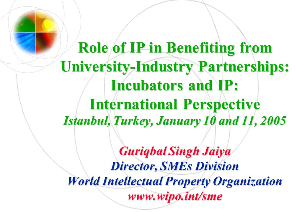 Role of IP in Benefiting from University-Industry Partnerships: Incubators and IP: International Perspective Istanbul, Turkey, January 10 and 11, 2005
