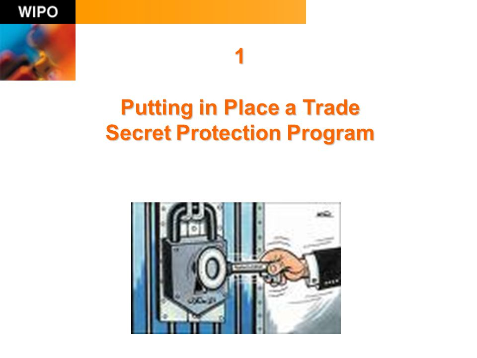 1 Putting in Place a Trade Secret Protection Program