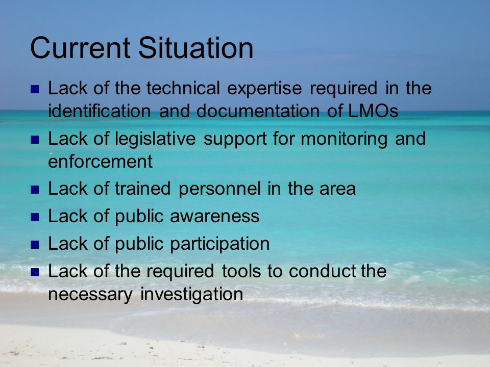 Current Situation Lack of the technical expertise required in the identification and documentation of LMOs Lack of legislative support for monitoring and enforcement Lack of trained personnel in the area Lack of public awareness Lack of public participation Lack of the required tools to conduct the necessary investigation