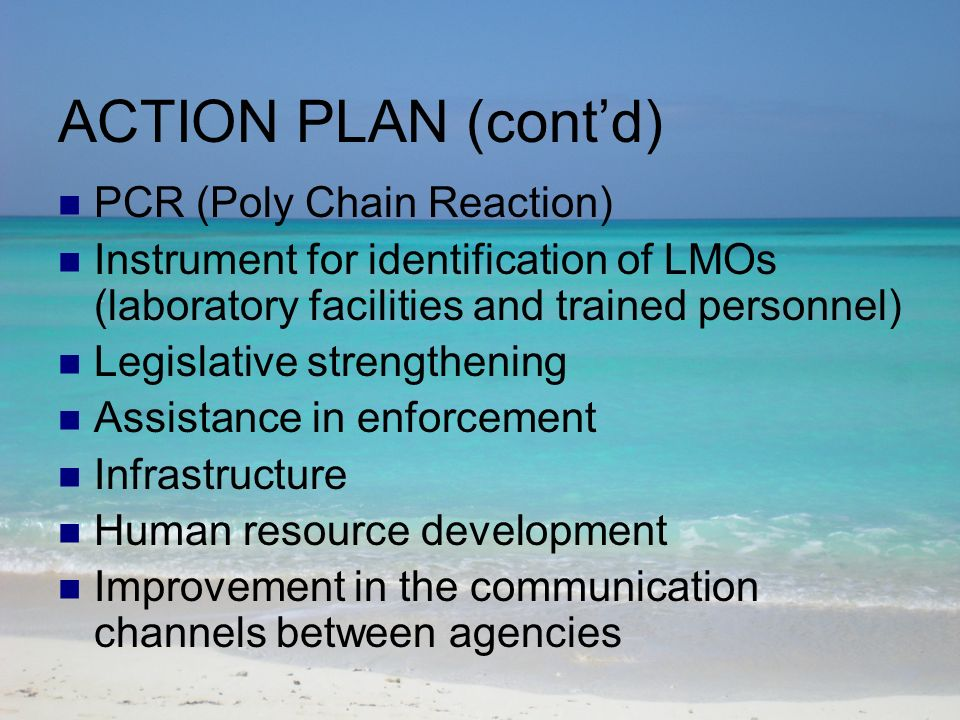 ACTION PLAN (contd) PCR (Poly Chain Reaction) Instrument for identification of LMOs (laboratory facilities and trained personnel) Legislative strengthening Assistance in enforcement Infrastructure Human resource development Improvement in the communication channels between agencies