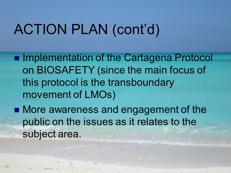 ACTION PLAN (contd) Implementation of the Cartagena Protocol on BIOSAFETY (since the main focus of this protocol is the transboundary movement of LMOs) More awareness and engagement of the public on the issues as it relates to the subject area.