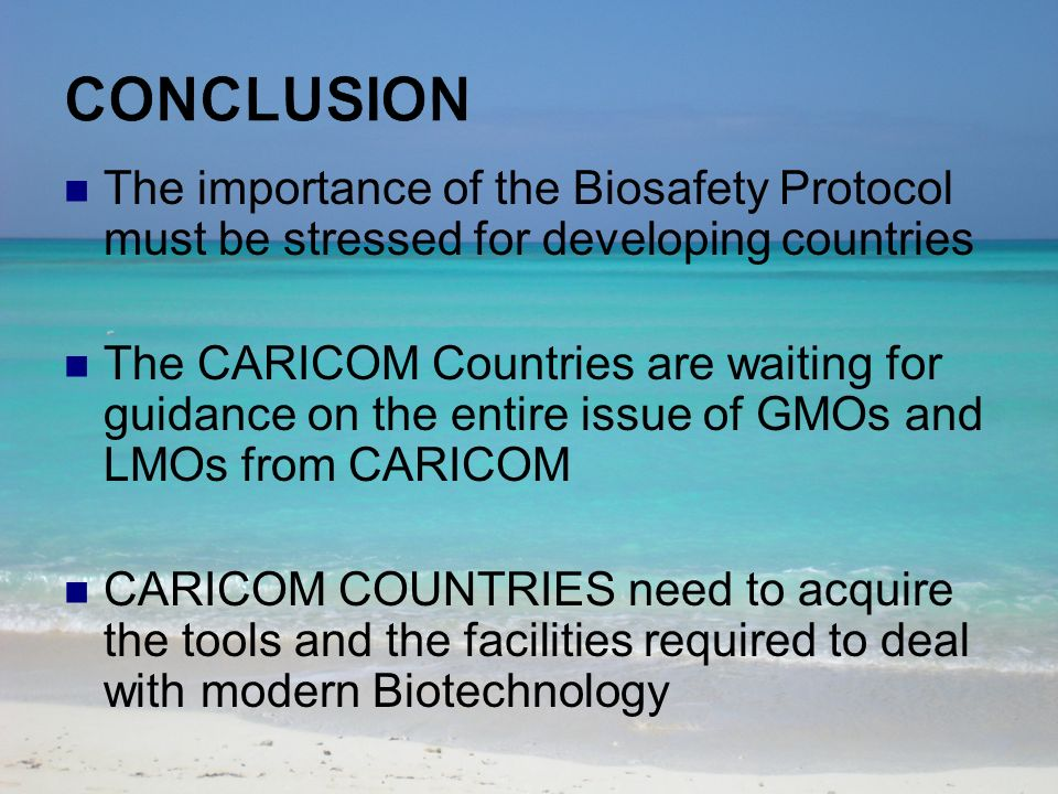 The importance of the Biosafety Protocol must be stressed for developing countries The CARICOM Countries are waiting for guidance on the entire issue of GMOs and LMOs from CARICOM CARICOM COUNTRIES need to acquire the tools and the facilities required to deal with modern Biotechnology