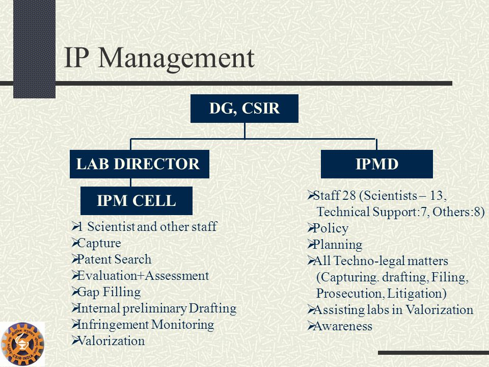 IP Management DG, CSIR LAB DIRECTOR IPMD IPM CELL Staff 28 (Scientists – 13, Technical Support:7, Others:8) Policy Planning All Techno-legal matters (