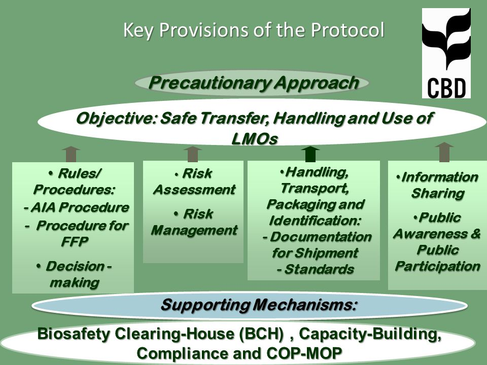 Precautionary Approach Objective: Safe Transfer, Handling and Use of LMOs Biosafety Clearing-House (BCH), Capacity-Building, Compliance and COP-MOP Supporting Mechanisms: Risk Assessment Risk Assessment Risk Management Risk Management Information Sharing Information Sharing Public Awareness & Public Participation Public Awareness & Public Participation Rules/ Procedures: Rules/ Procedures: - AIA Procedure - AIA Procedure - Procedure for FFP - Procedure for FFP Decision - making Decision - making Handling, Transport, Packaging and Identification: Handling, Transport, Packaging and Identification: - Documentation for Shipment - Documentation for Shipment - Standards Key Provisions of the Protocol
