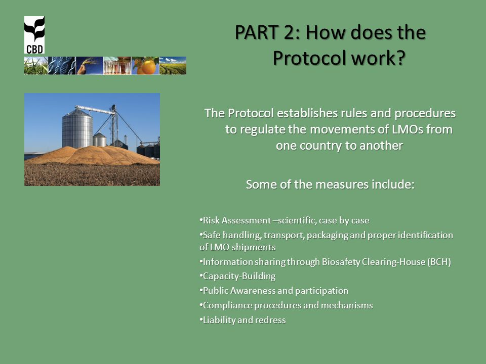 PART 2: How does the Protocol work.