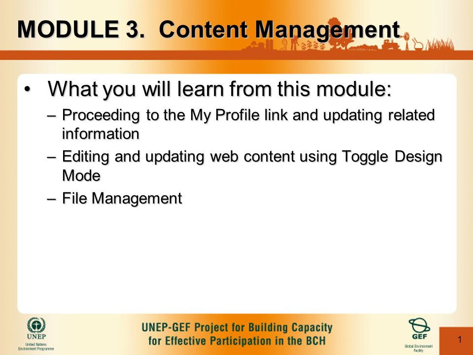 1 What you will learn from this module:What you will learn from this module: –Proceeding to the My Profile link and updating related information –Editing and updating web content using Toggle Design Mode –File Management MODULE 3.
