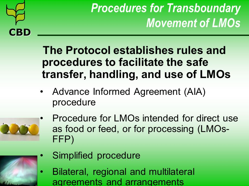 CBD Procedures for Transboundary Movement of LMOs The Protocol establishes rules and procedures to facilitate the safe transfer, handling, and use of