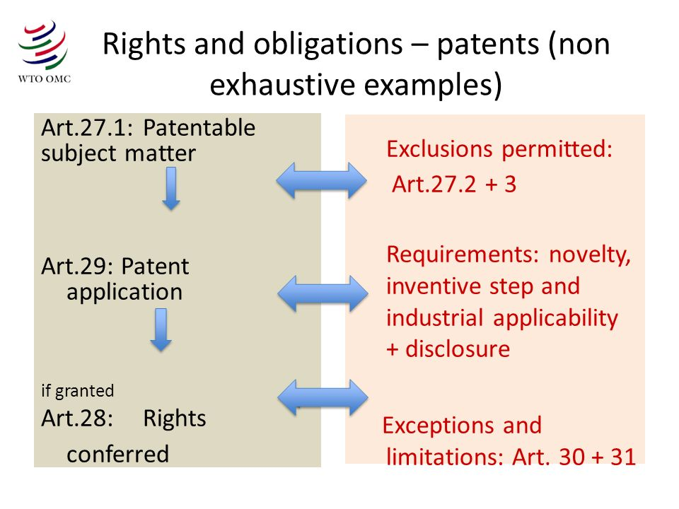 Rights and obligations – patents (non exhaustive examples) Art.27.1: Patentable subject matter Art.29: Patent application if granted Art.28: Rights co