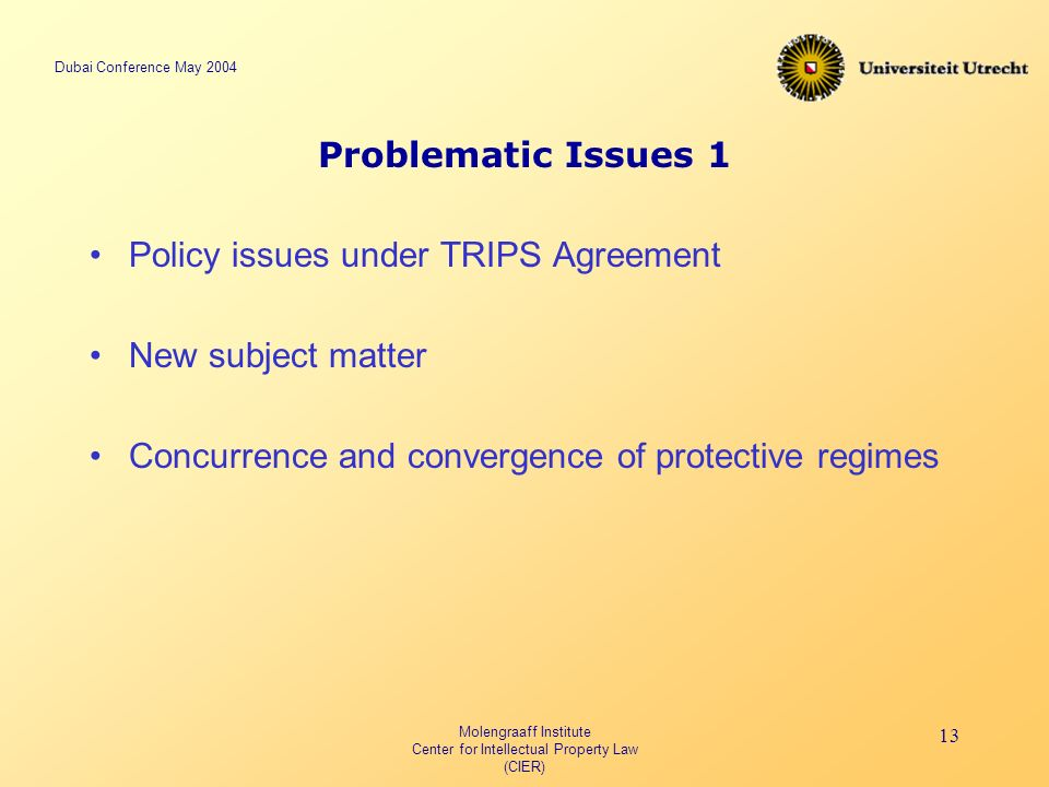 Dubai Conference May 2004 Molengraaff Institute Center for Intellectual Property Law (CIER) 13 Problematic Issues 1 Policy issues under TRIPS Agreement New subject matter Concurrence and convergence of protective regimes