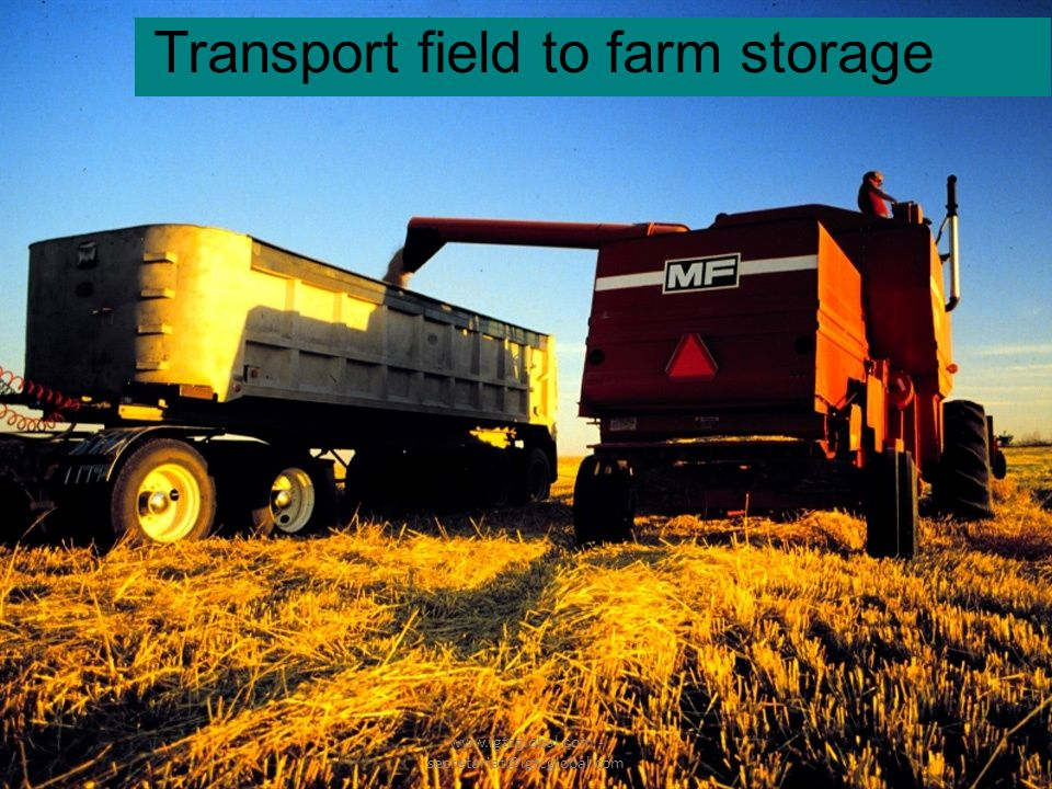 17 Transport field to farm storage www.igtcglobal.com - secretariat@igtcglobal.com