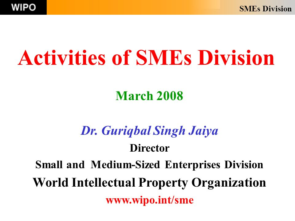 SMEs Division Activities of SMEs Division March 2008 Dr.