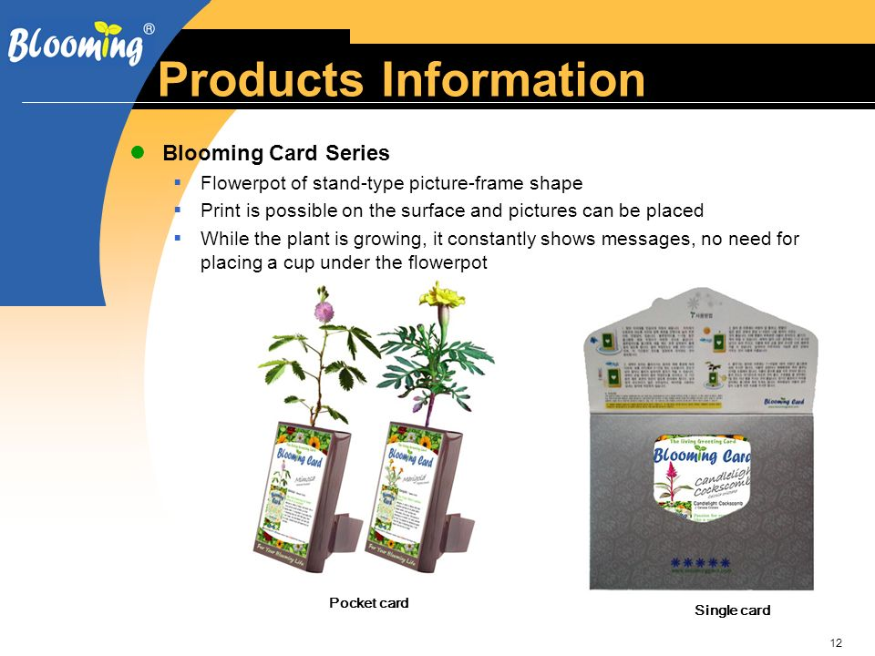 12 Products Information Blooming Card Series Flowerpot of stand-type picture-frame shape Print is possible on the surface and pictures can be placed While the plant is growing, it constantly shows messages, no need for placing a cup under the flowerpot Pocket card Single card